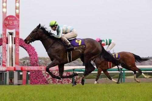 桜花賞 競馬予想 レース回顧