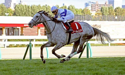 札幌記念 競馬予想 レース回顧